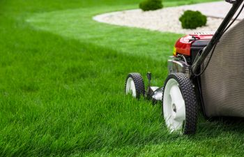 a lawn mower on a green lawn